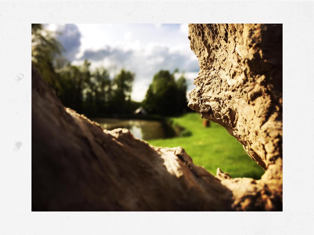 Naturia - panorama 4